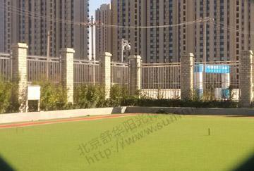 北京舒华阳光 场地照明 室外门球场  人造草