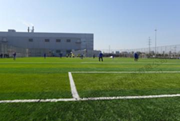 北京舒华阳光 场地照明 室外足球场 人造草  LED防眩灯具